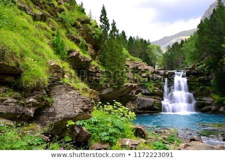 river in ordesa national park pyrenees huesca aragon spain stock photo © nenetus