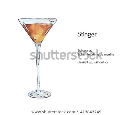 Cocktail alcoholic Stinger scetch Stock photo © netkov1