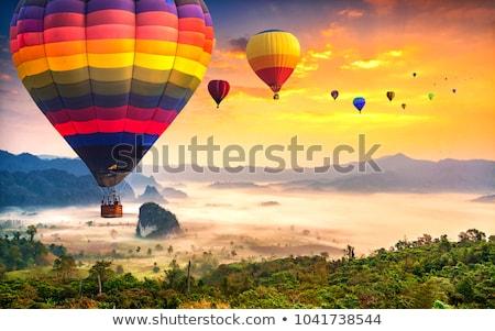 Színes hőlégballon fák repülés tájkép utazás Stock fotó © davidgn