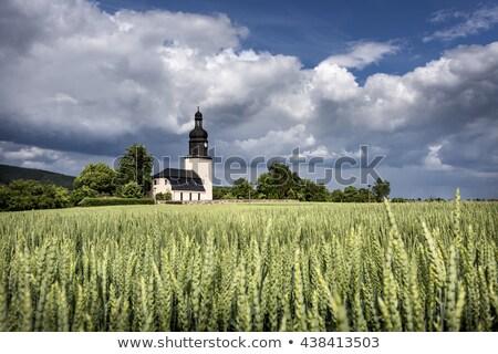 manzaralı · panorama · manzara · gökyüzü · ağaçlar · alan - stok fotoğraf © meinzahn