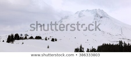 Burada görmek üst Kayak durdurmak Stok fotoğraf © stockfrank