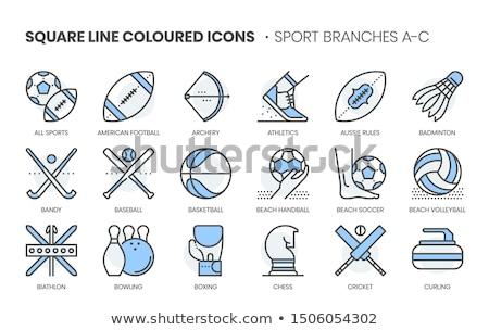 Handball icon in blue color Stock photo © bluering