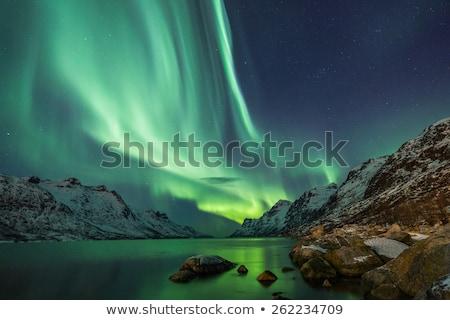 Noordelijk lichten illustratie verbazingwekkend hemel Stockfoto © paulfleet