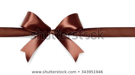 Marrom cetim arco isolado branco vetor Foto stock © -Baks-