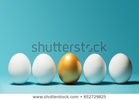 one golden egg stock photo © anatolym