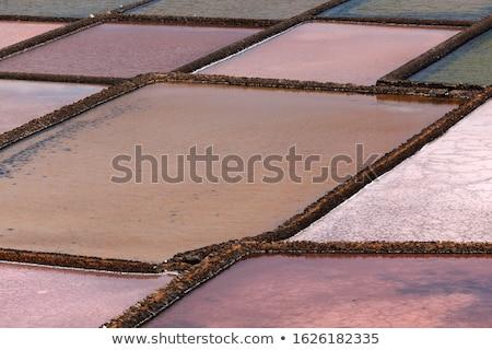 Kurutulmuş tuz mayın arka plan okyanus kaya Stok fotoğraf © meinzahn