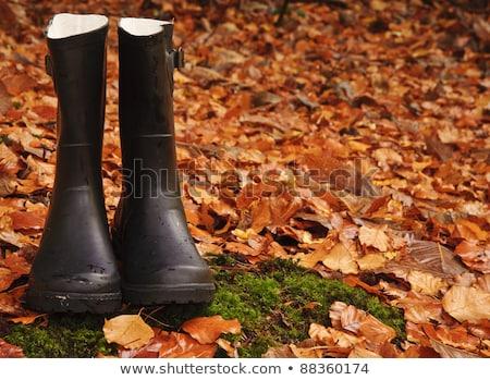 ブーツ 葉 女性 秋 インド 立って ストックフォト © IS2