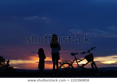 Little girl standing in a field Stock photo © IS2