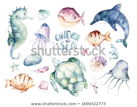Meduza óceán illusztráció hal természet háttér Stock fotó © bluering