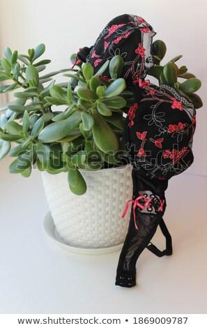 Vrouw ondergoed steeg bloem venster schoonheid Stockfoto © dolgachov