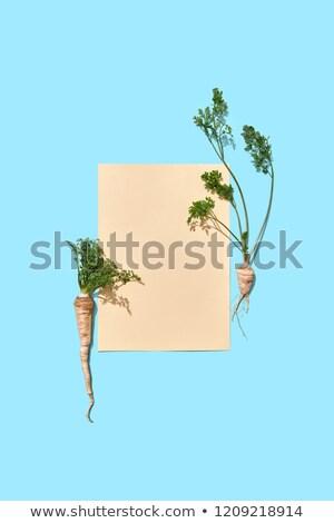 Peterselie wortels groene stuk papier Stockfoto © artjazz