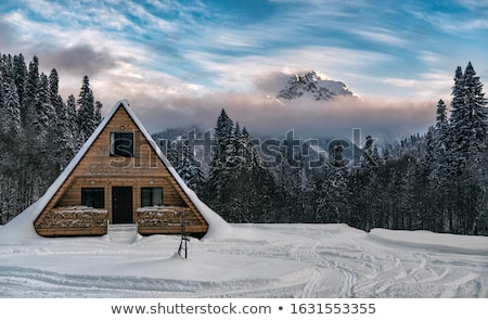 Mountains Range and trees at sundown time, winter landscape Stock photo © Taiga