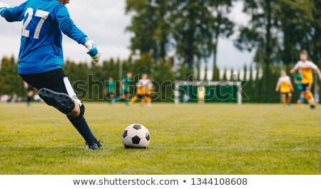 Soccer Football Goalkeeper Goal Kick. Goalie Kick on the Pitch Stock photo © matimix