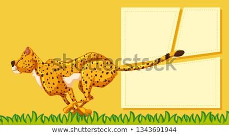 cheetah · illustratie · permanente · drogen · gras - stockfoto © bluering