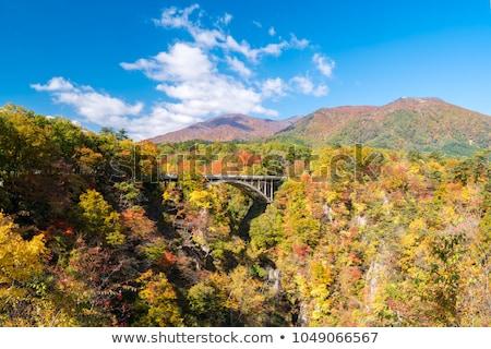 Naruko Gorge valley with rail tunnel in Miyagi Tohoku Japan Stock photo © vichie81