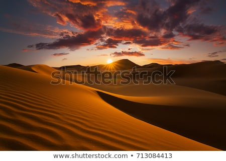 Desert with sand dunes and clouds Stock photo © vapi