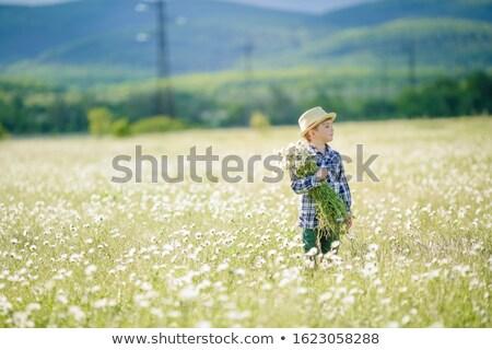 Mulher agrícola campo branco margaridas flor Foto stock © ElenaBatkova