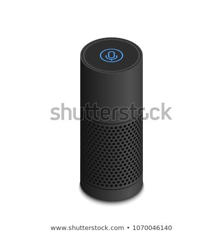 оратора голосом контроль изометрический икона вектора Сток-фото © pikepicture