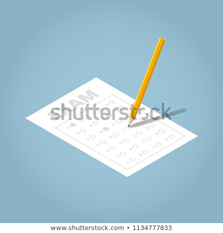 Vizsgálat lap toll izometrikus ikon vektor Stock fotó © pikepicture