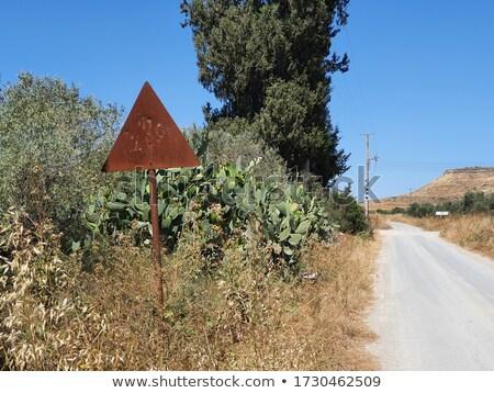 Ciprus autópálya tábla zöld felhő utca felirat Stock fotó © kbuntu