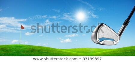 view of a golf course in sunny day panoramic composition stock photo © moses