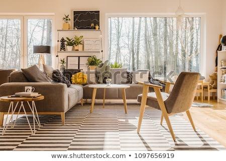 Gezellig hoek kamer houten meubels huis Stockfoto © Fisher
