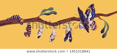 Branch with butterflies. stock photo © christina_yakovl