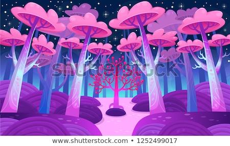 лес сокровище конус мох символ природы Сток-фото © Alvinge