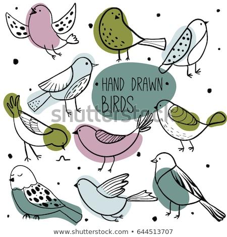 Oiseau main peu main humaine neige anneau Photo stock © arocas