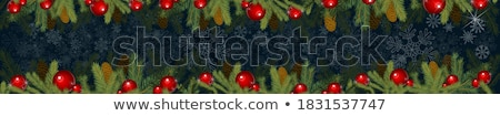 beautiful illustration for newyear, christmas Stock photo © aispl