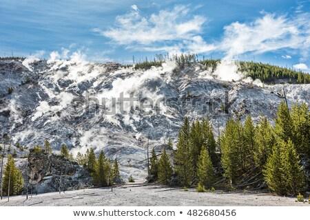 Yellowstone Roaring Mountain Stock photo © fotogal