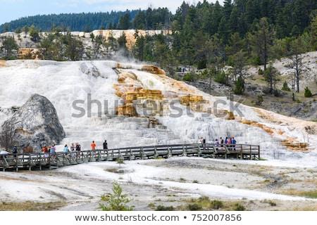 Yellowstone terraces Stock photo © fotogal