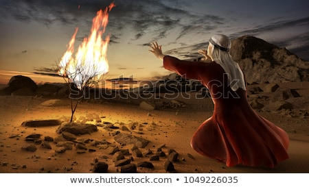 Burning Bush Stock photo © teusrenes