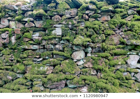ぬれた · 石の壁 · 建設 · 石 · レンガ · アーキテクチャ - ストックフォト © smithore