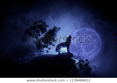 wolf howling at the moon stock photo © samopauser