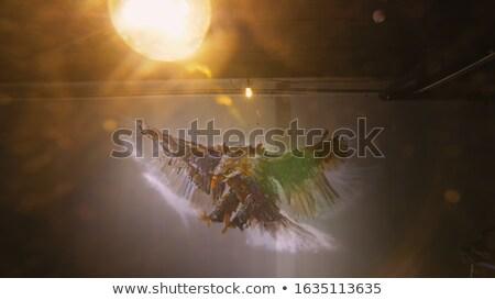 ремесленник художника спрей краской работник Сток-фото © photography33