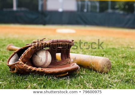 old baseball glove on the grass stock photo © sandralise