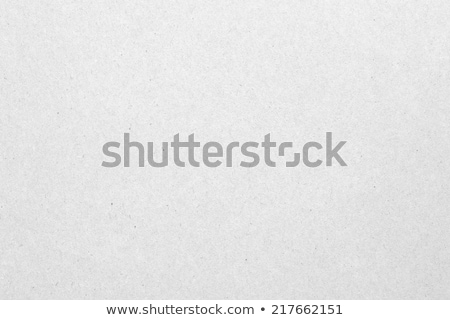 light gray paper texture or background stock photo © ecelop