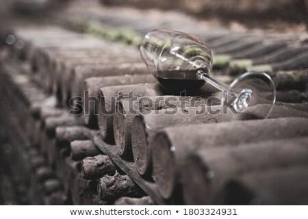 вино бутылок погреб пыльный группа промышленных Сток-фото © photosil