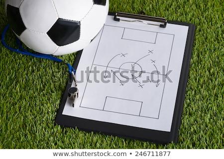 Сток-фото: Coaching Areas Diagram