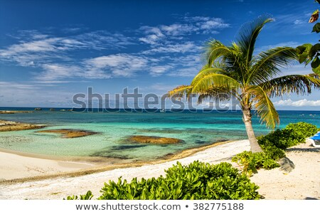 Great weather in the caribbean Stock photo © photochecker