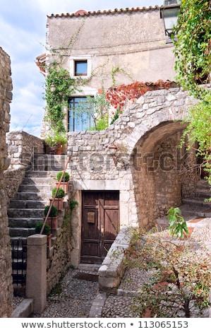 Schody drzwi stary dom Toskania drewna tle Zdjęcia stock © wjarek