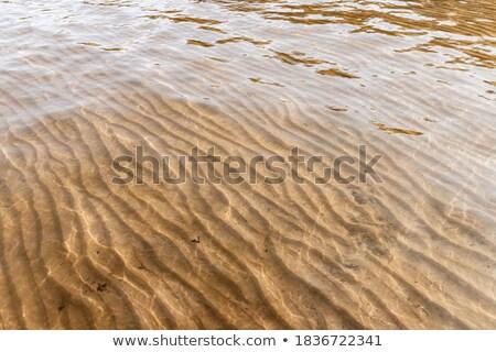 Closeup photo of sand flows texture background Stock photo © alexandkz