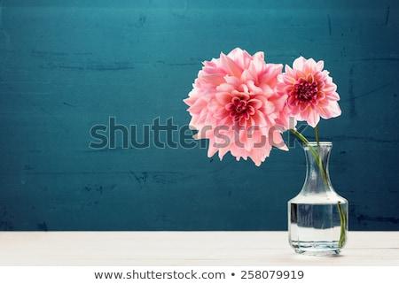 vrouw · vaas · bloemen · foto · jonge · mooie · vrouw - stockfoto © dolgachov