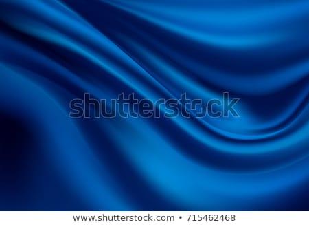 Niebieski jedwabiu wzór ilustracja jedwabisty kwiatowy Zdjęcia stock © simas2