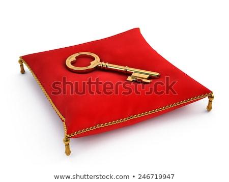 business   golden key stock photo © tashatuvango