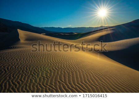 Mesquite Dunes desert in Death Valley wind sand storm Stock photo © lunamarina