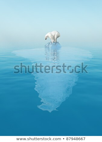 the last polar bear stock photo © freezingpictures