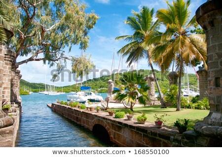 Nelson's Dockyard in Antigua Stock photo © luissantos84