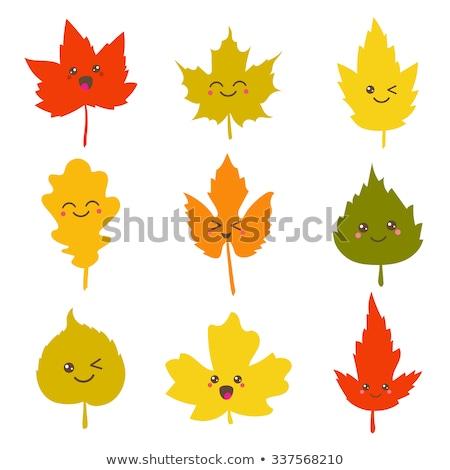 Smile leaf Stock photo © varts